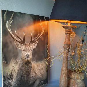 Schilders paneel Damhert voor in een landelijk interieur bij Benard's Woonaccessoires